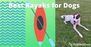 Best Kayaks for Dogs - Dog laying on the grass
