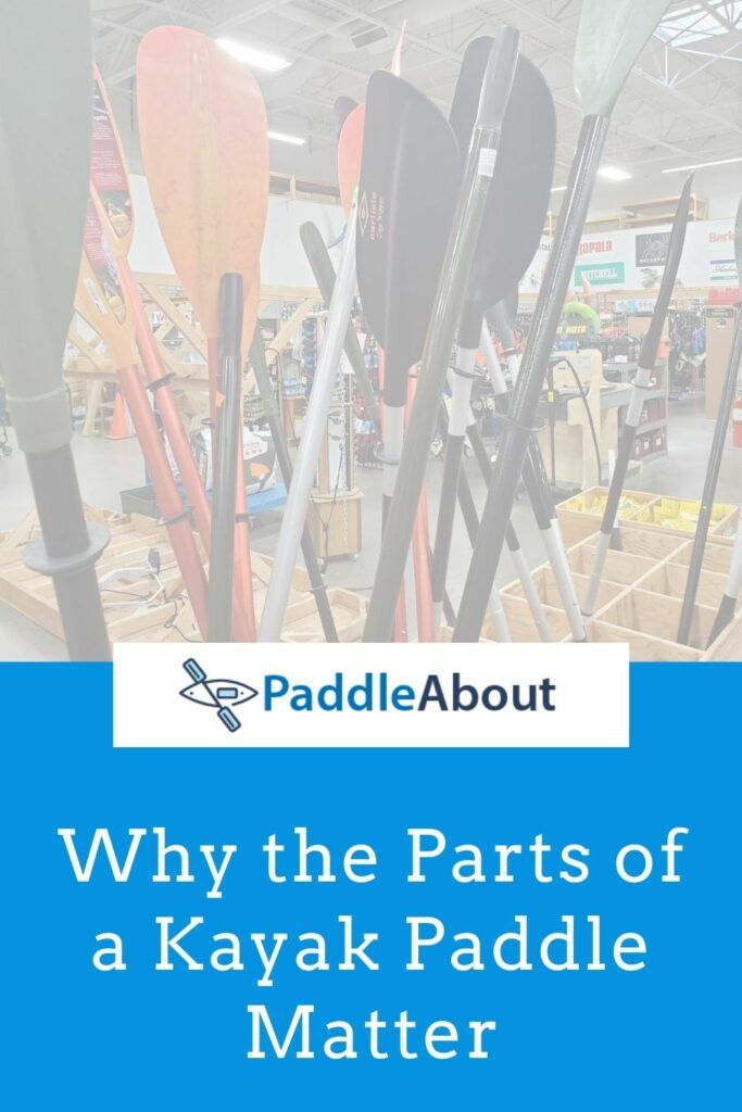 Parts of a kayak paddle - kayak paddles in a store